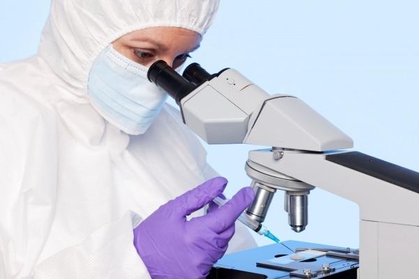 Consulta boccia divieto di diagnosi preimpianto