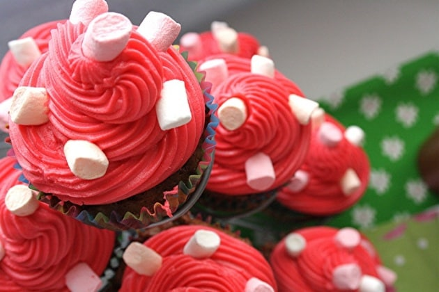 cupcake48