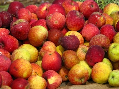 frutta-400.180x120