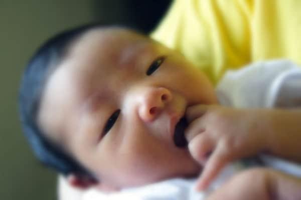 neonatocina.600