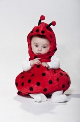 dolce-coccinella-di-prenatal