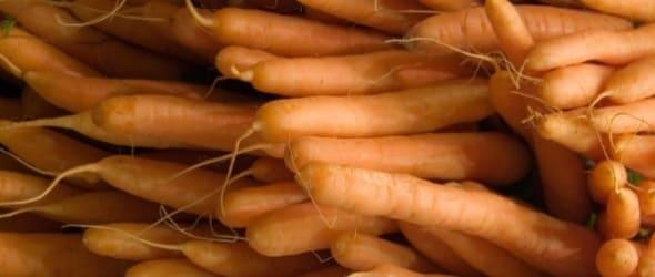 crema-carote_big.180x120