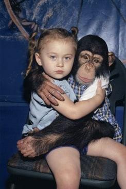 Amelia and the Animals - Amelia e gli animali
