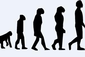 evoluzione.600