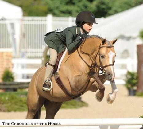 5_equitazione
