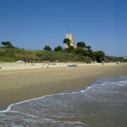 pineta-torre-cerrano