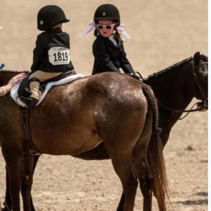 11_equitazione