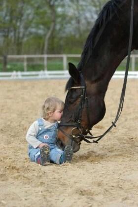 13_equitazione