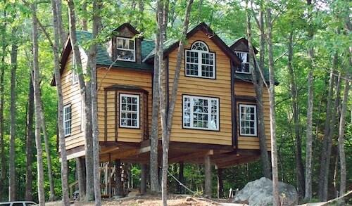 La famiglia che vive sull 39 albero il fotoracconto for Case in legno sugli alberi