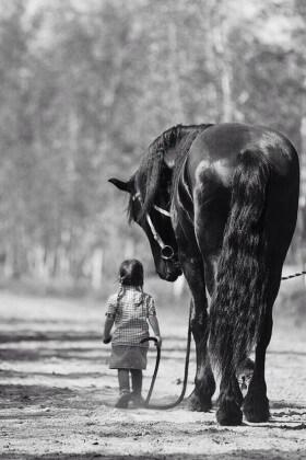 14_equitazione