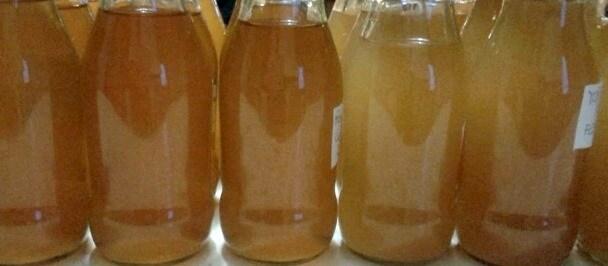 17.fermentatithailandesi
