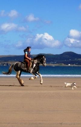 18_equitazione