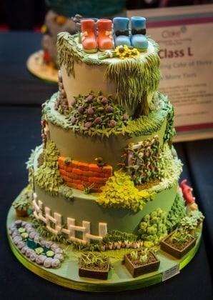 6.torta