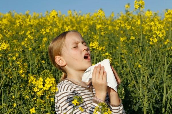 allergiepollini