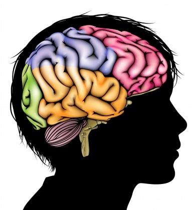 4neuroscienze