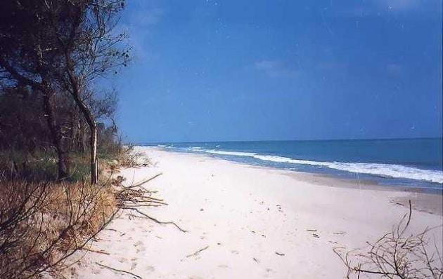 spiaggia-marina-di-pisticci