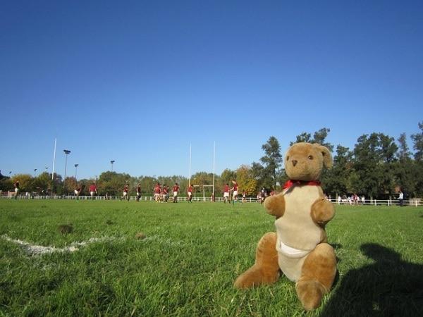 rugbybambini.600