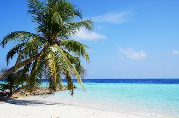 maldives-1357020_1280