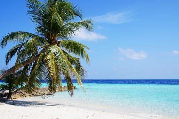 Consigli di viaggio per trascorrere le vacanze natalizie con i bambini all'estero