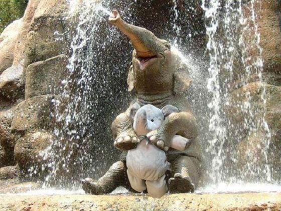 elefanteperso2