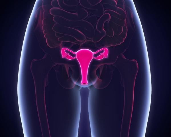 infertilita-fattori-uterini