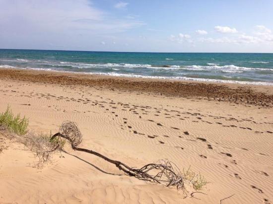 spiaggia-di-santa-maria