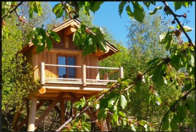 le pi belle case sull 39 albero di tutto il mondo
