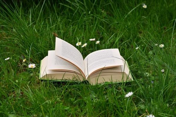 30 Libri Classici E Imperdibili Della Letteratura Per L
