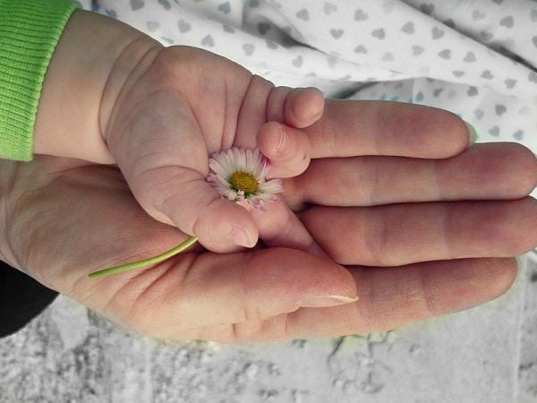 hands-105455_1280.600