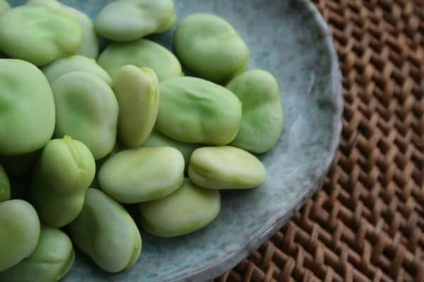 broad-beans-after-cooking.600