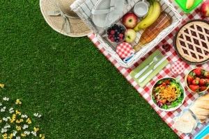 picnic.600