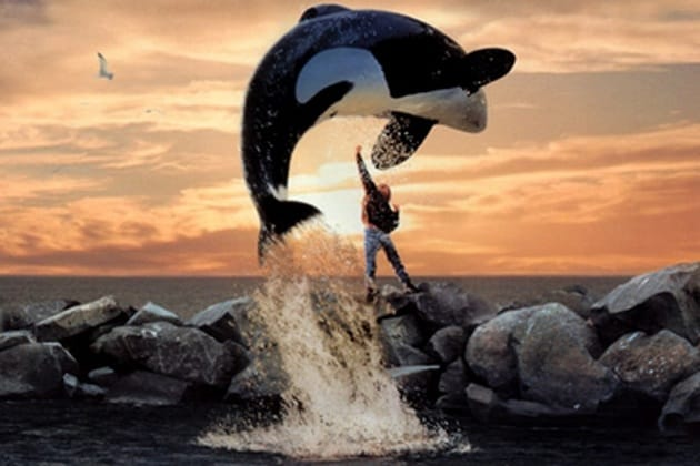 8freewilly