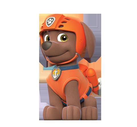 Paw patrol i personaggi nostrofiglio.it