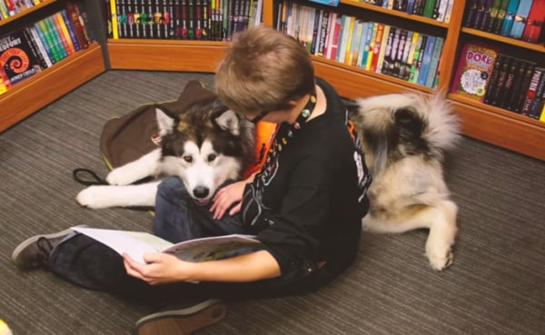 dogs-helping-kids-nf