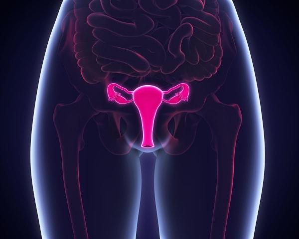 infertilita_fattori_cervicali.600