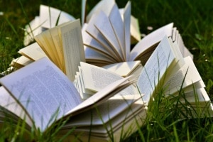 libri.600