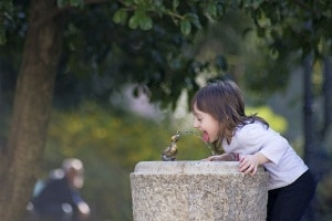 sete-fontanella