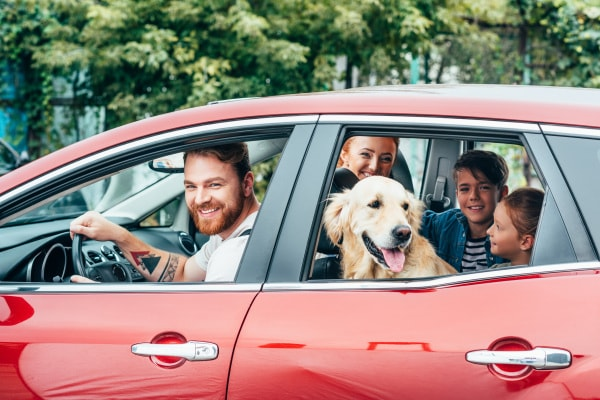 auto familiari guida acquisto