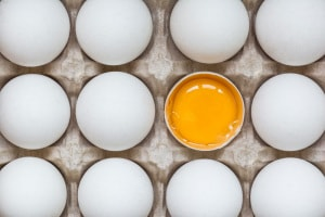 uovo-tuorlo.600