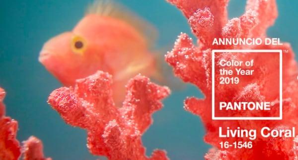 Disegni Da Colorare Armadio Di Chloe : I regali di natale color living coral nostrofiglio