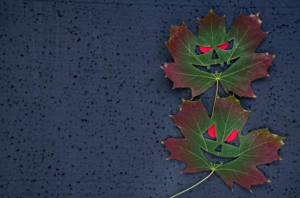 lavoretti halloween scuola infanzia foglie
