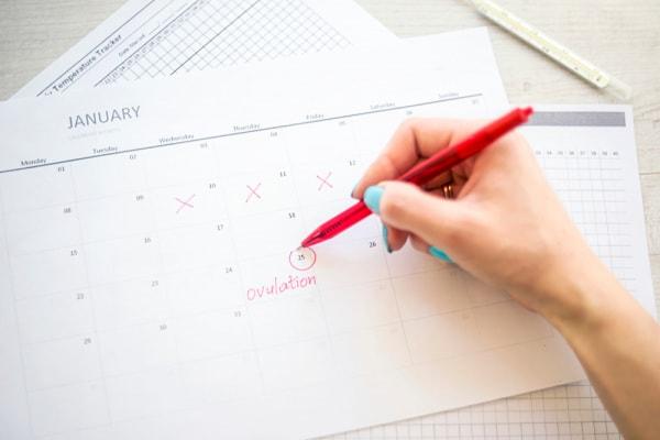 Calendario Del Ciclo Mestruale.Calendario Ovulazione Nostrofiglio It