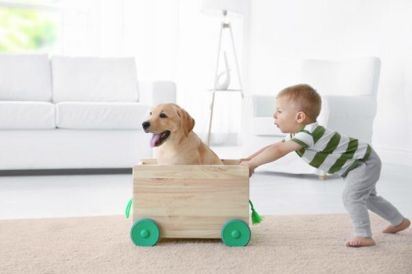Bambini e cani: le malattie che possono essere trasmesse