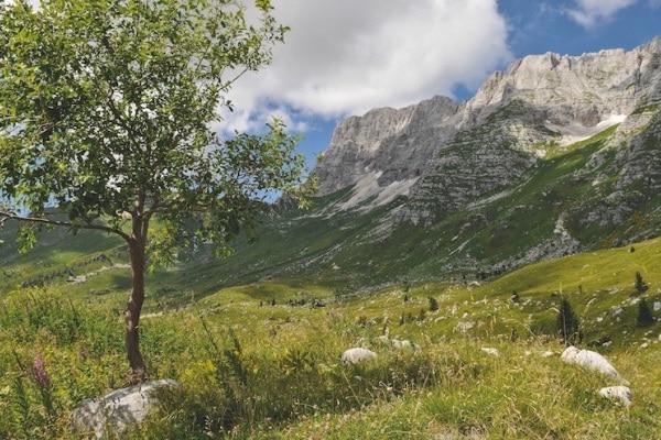 Tarvisio d'estate, 11 cose da fare in vacanza in montagna con la famiglia