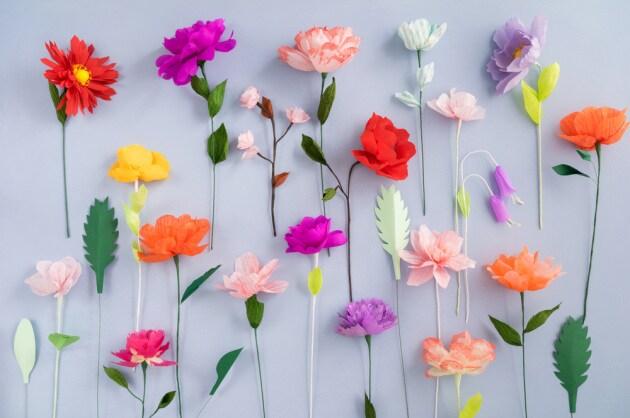 fioricartavelina