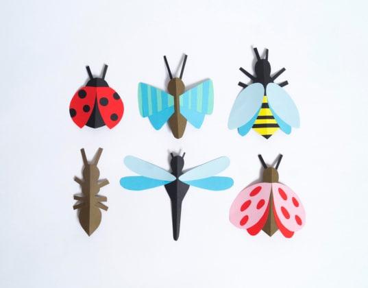 insettidicarta