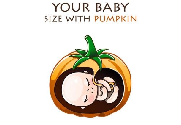 feto-copertina